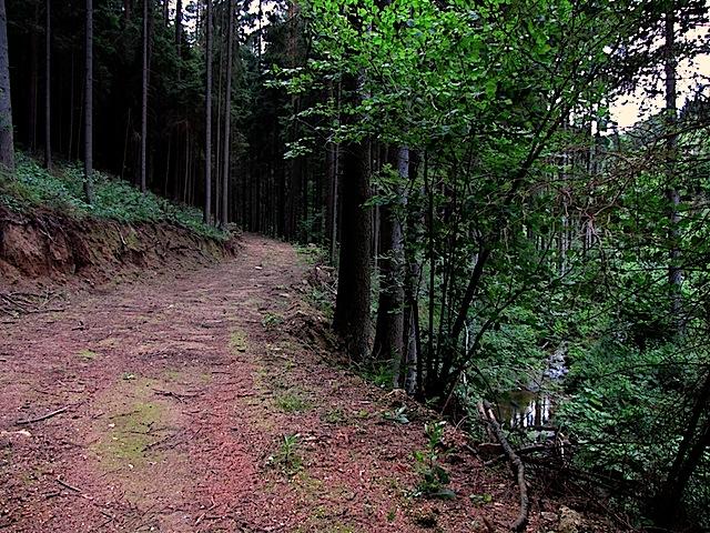 Beim Sprögnitzbach