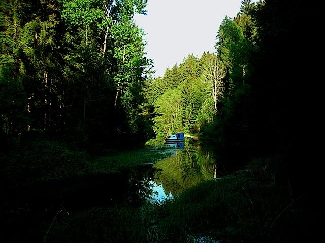 Friedersbachfjord