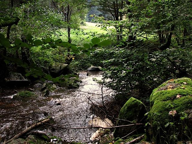Steile Ufer