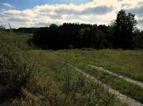 Feldweg bei Rastenfeld