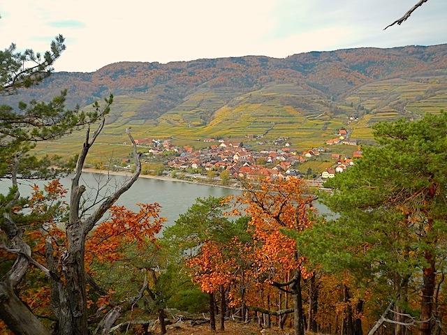 Blick zur Donau