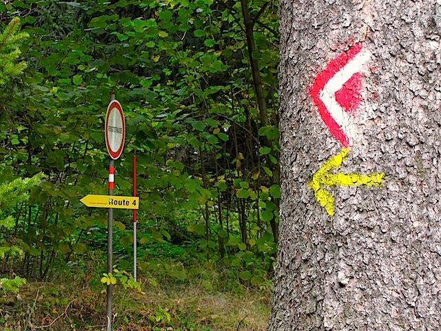 Richtung Loschberg