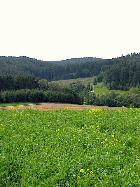 Richtung Höppelmühle
