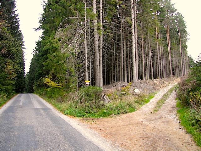 Richtung Waldweg