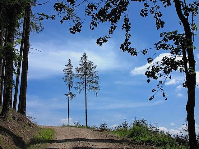 Richtung Nebelstein
