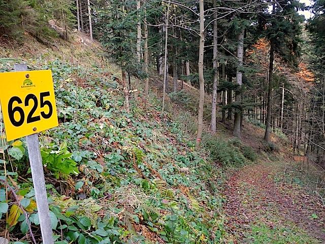 Abstieg Kornberg