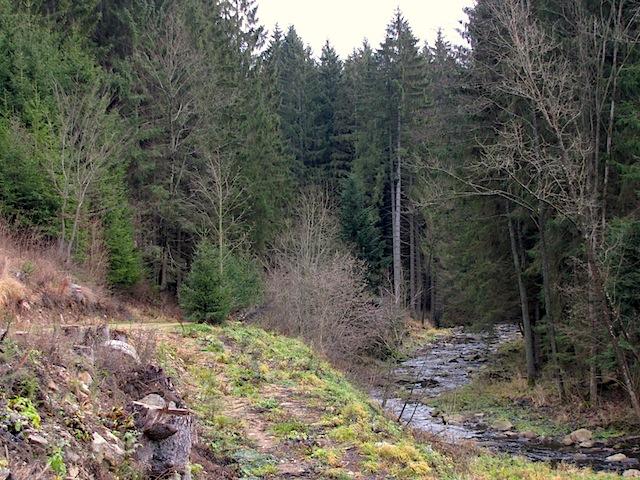 Richtung Königsmühle