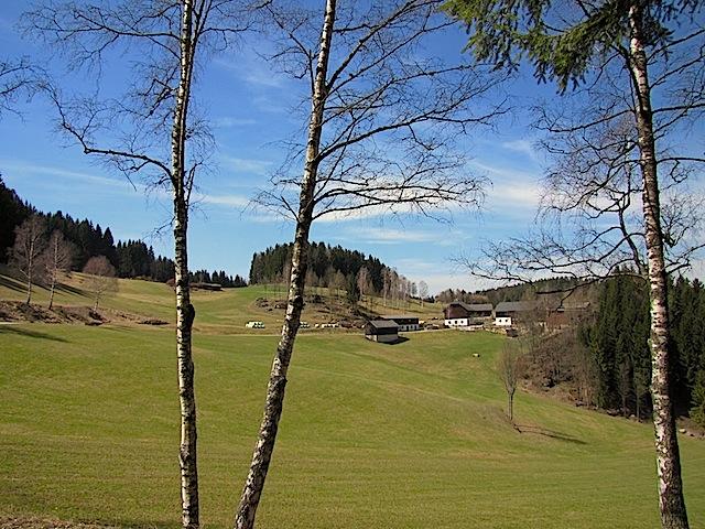 Blick zum Fichtenhof