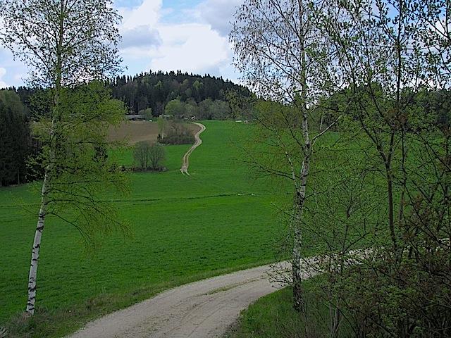 Schönfeldbachtal