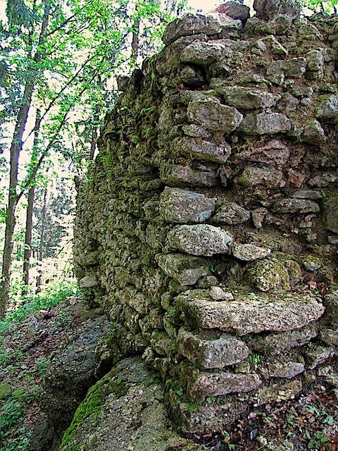 Ruine am Weinsberg