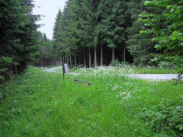 Holzkreuz am Straßenrand