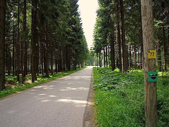 Straße Richtung Dietrichsbach