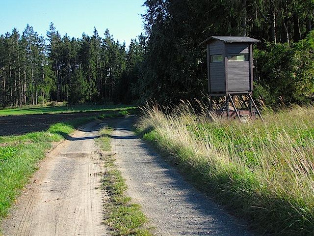 Beim Pfarrwald