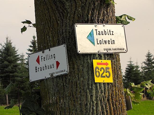 Baum mit Wegweisern