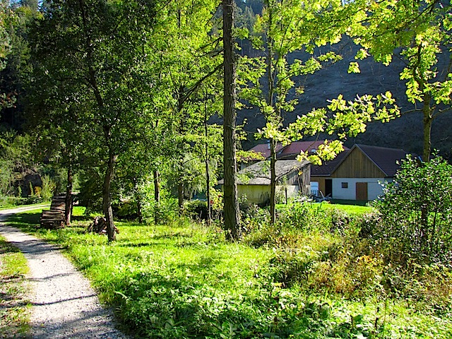 Die Birkenmühle