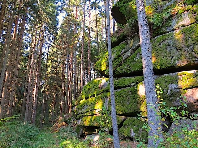 Im Sprögnitzbachtal