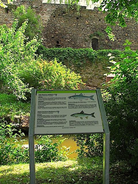 Fischlehrpfad