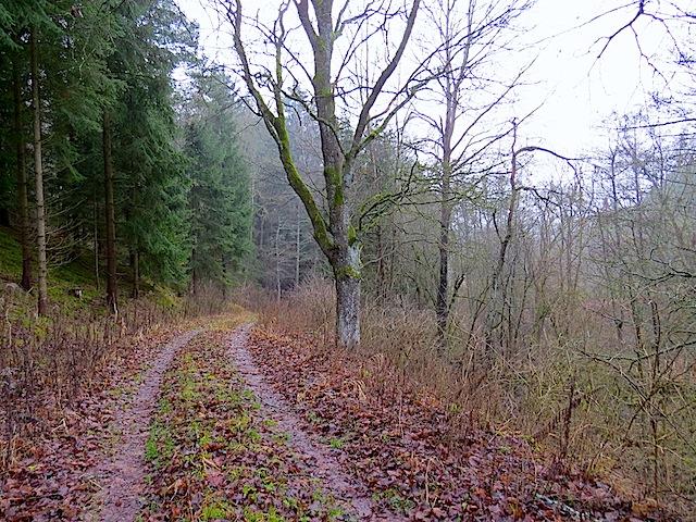 Richtung Niederplöttbach
