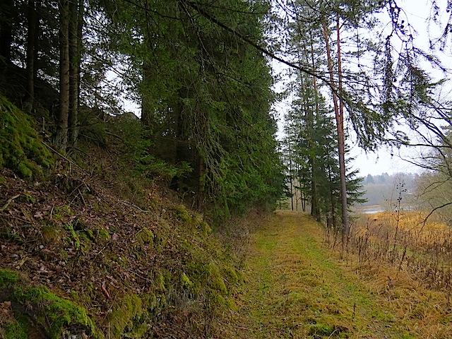 In Niederplöttbach