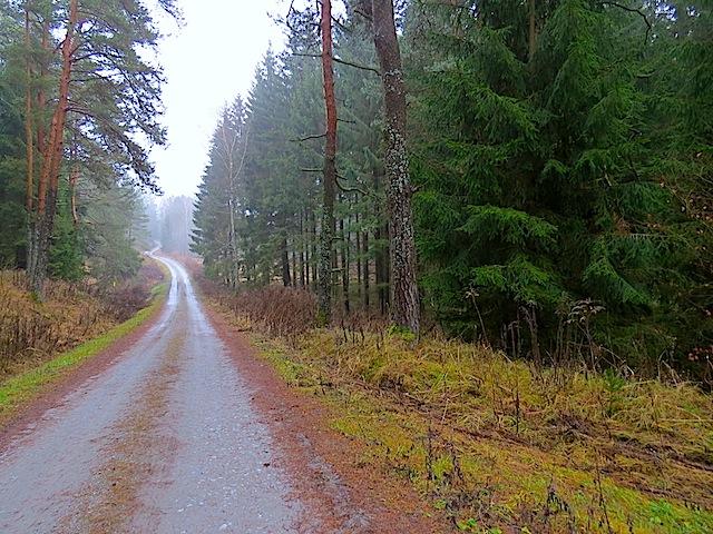 Richtung Döllersheim