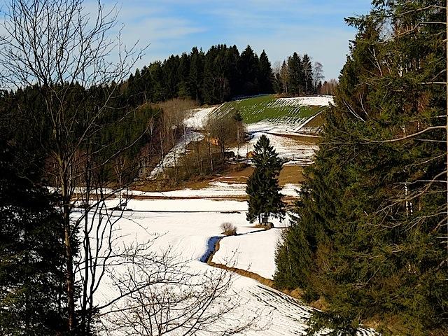 Blick ins Anschaubachtal