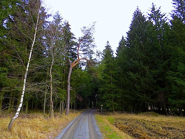 Richtung Breitenfeld