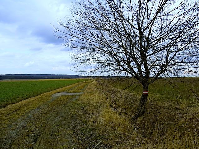 Richtung Bahndamm