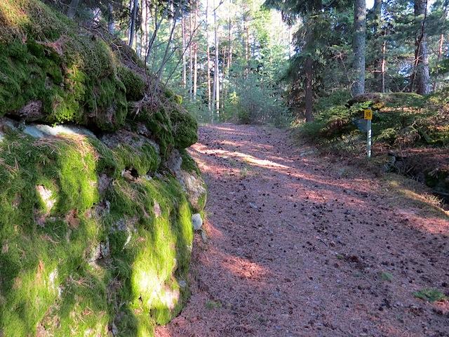 Aufstieg Schabesberg