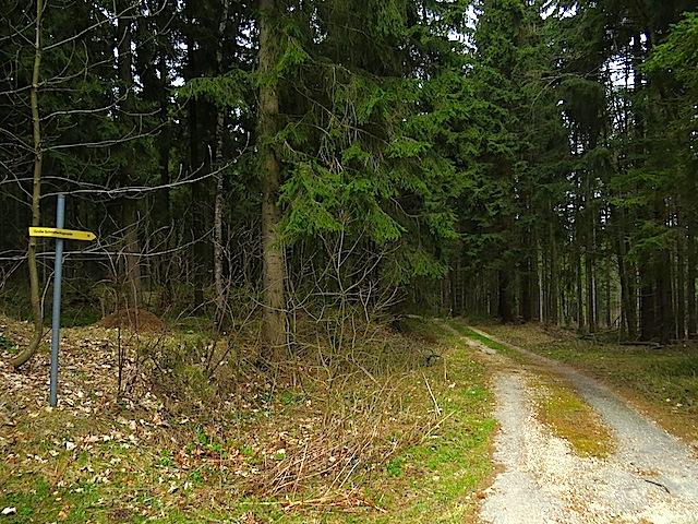 Richtung Wiegenwald