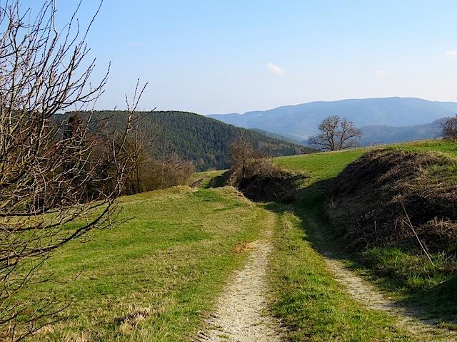 Zugang Schautafel