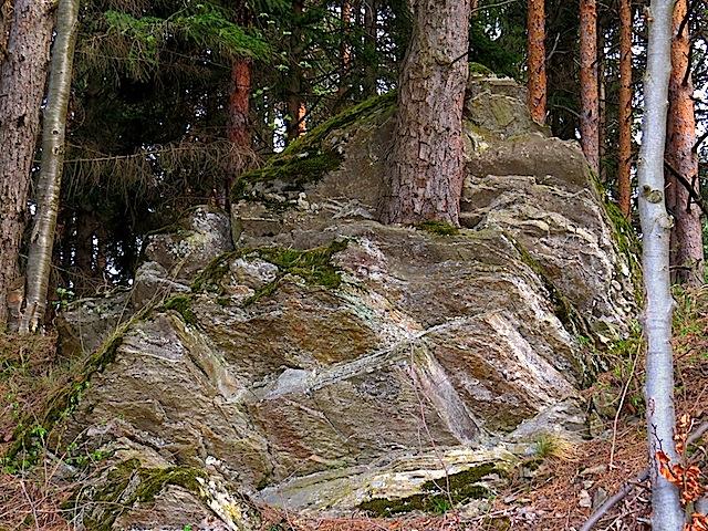 Stein und Baum