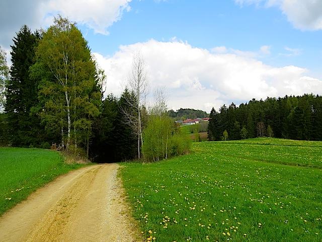 Richtung Wiesensfeld