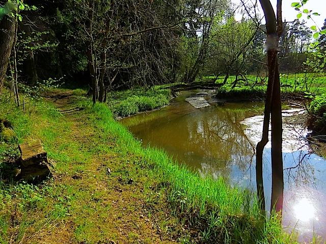Mündung Rotbach