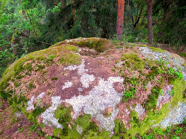 Ein Schalenstein