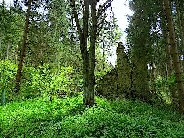 Der Auhof