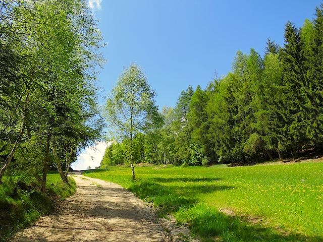 Richtung Scheibenhof