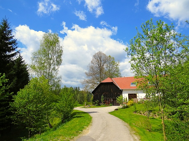 Beim Lindenhof