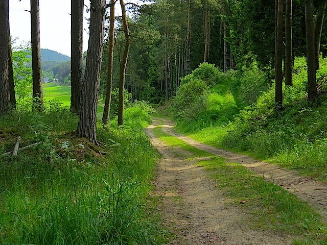 Richtung Pehendorf