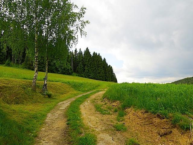 Wegkreuz hinter Kleinkamp