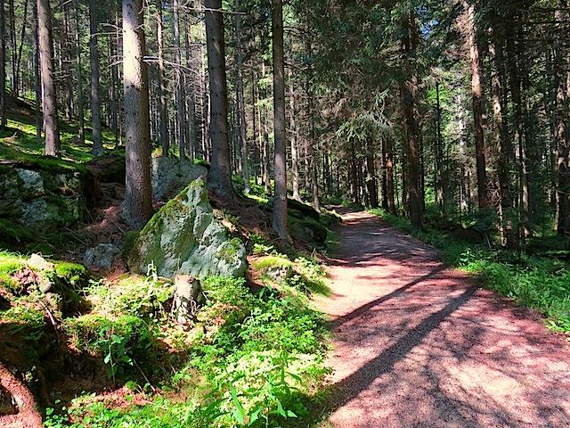 Waldweg beim Höllfall