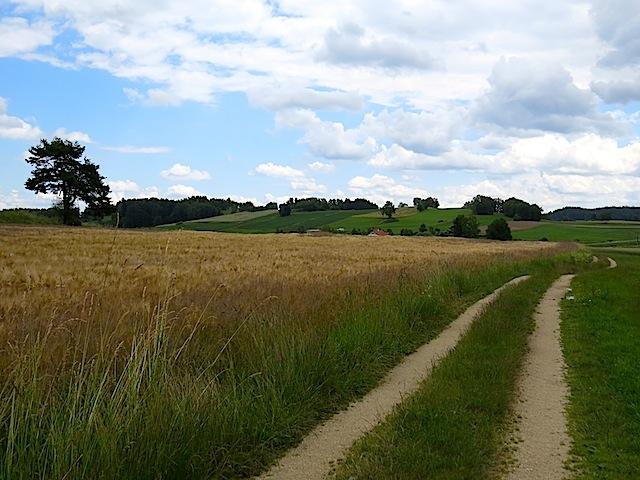 Richtung Klein-Gundholz