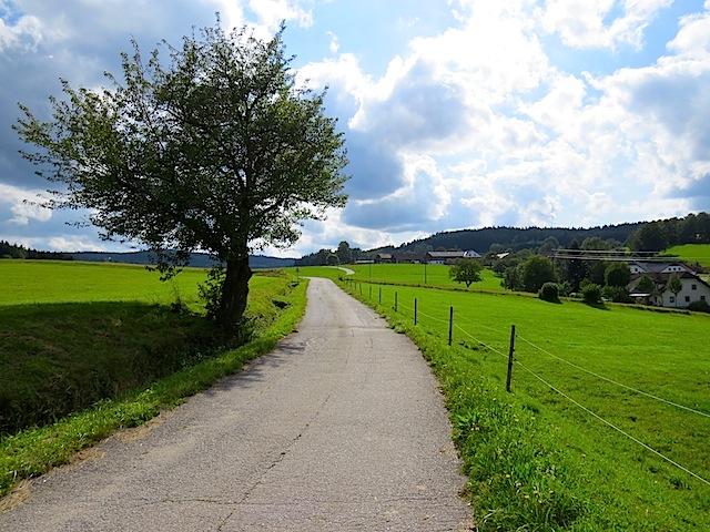 Oberhalb von Lauterbach