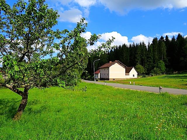 In Waldhäuser
