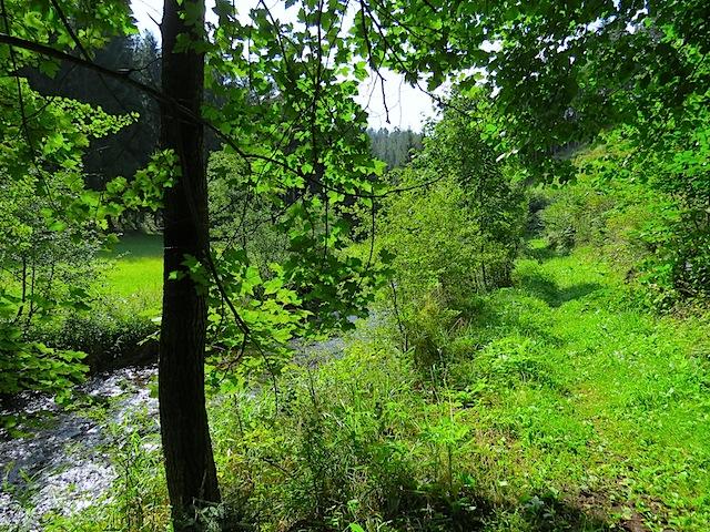 Uferweg Paradies