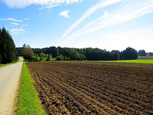 Felder bei Schwarzenbach