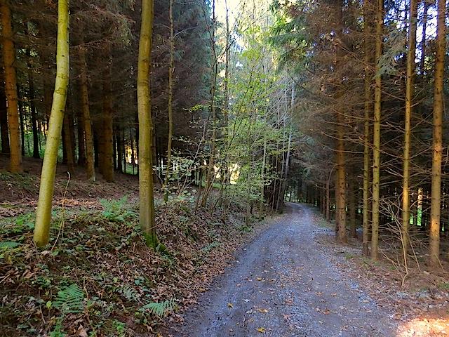 Richtung Klingenmühle