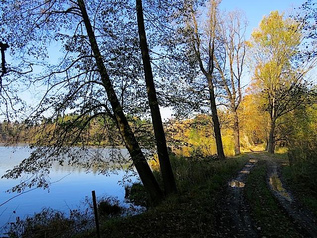 Der Damm des Althöllteiches