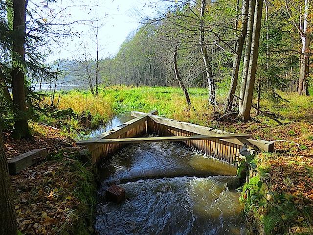 Abfluss Amtwiesteich
