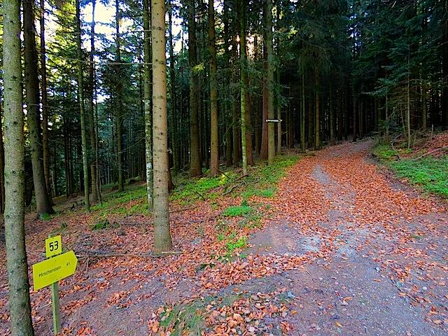 Richtung Hirschenstein