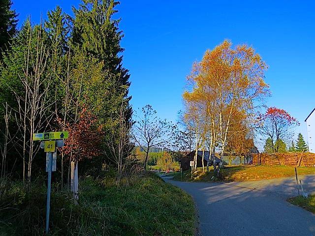 Kurz vor Gutenbrunn